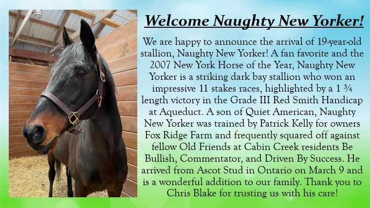 Welcome Naughty New Yorker!